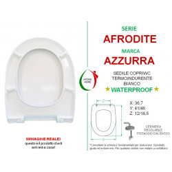 copy of Copriwater Adone Azzurra termoindurente bianco